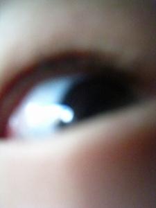 20100129_4.jpg
