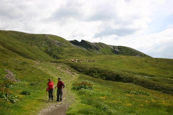 スイス ハイキング途中