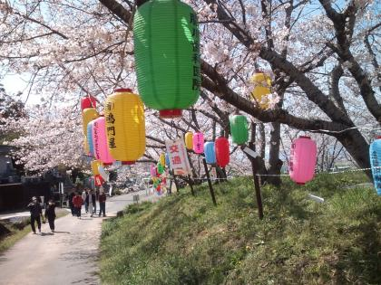 由子桜農業大地蔵院諏訪神社 (36)