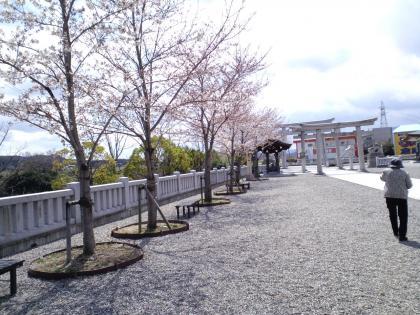 GokokuJinja20100330 (17)