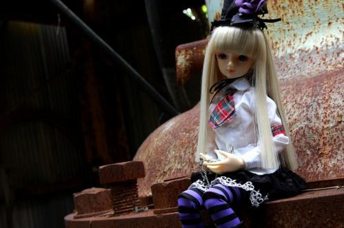 DSC_8696.jpg