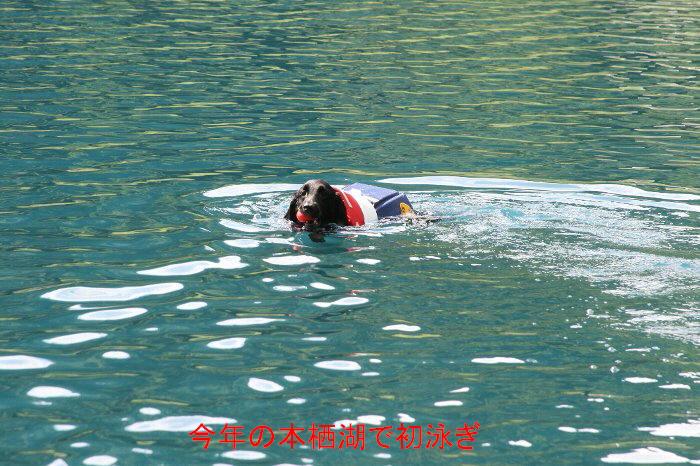 本栖湖初泳ぎ