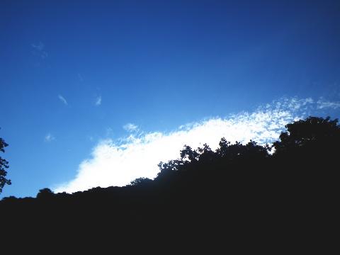 090823朝の空