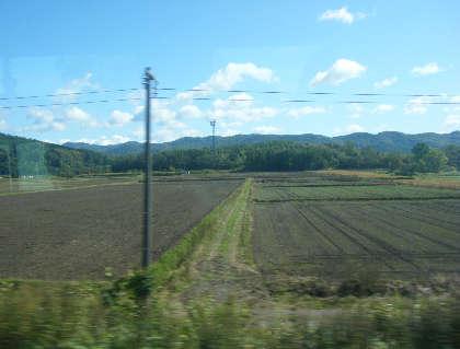 2008_10020044.jpg