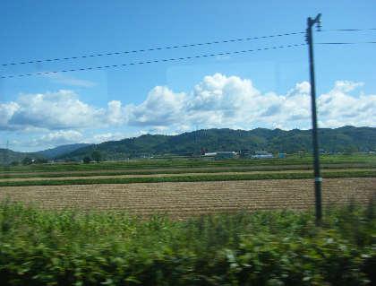 2008_10020072.jpg
