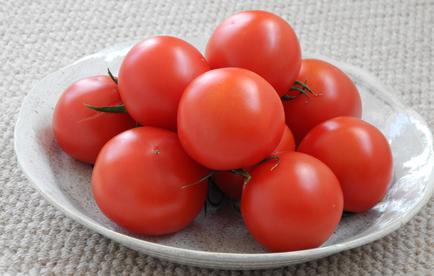 いわき市小名浜の新鮮でみずみずしいトマト