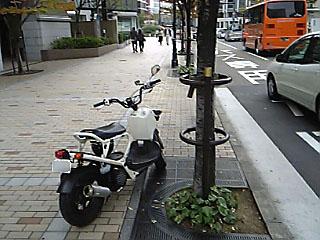 z20051103