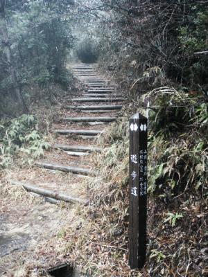 20120309熊山下見3