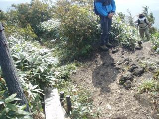 20111010中蒜山7