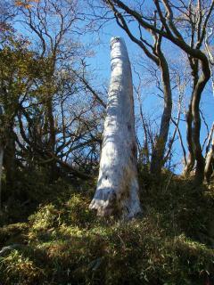 20111026傾山14