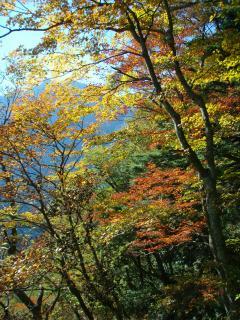 20111027祖母山20