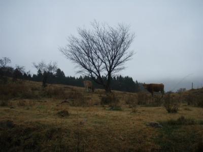 20111201根子岳03
