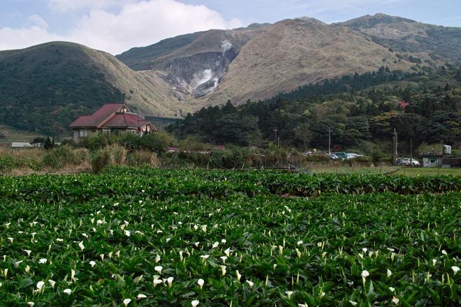 Taipei12030437.jpg