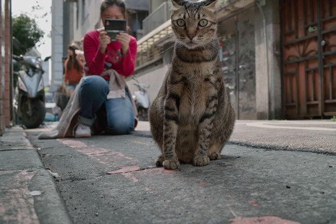 Taipei12040451.jpg