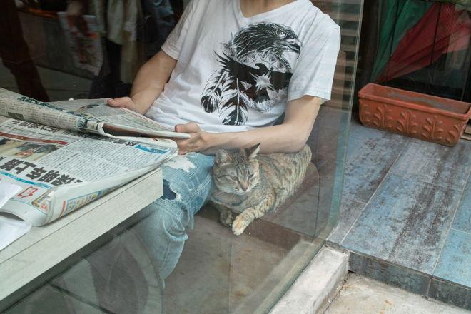 Taipei12040457.jpg