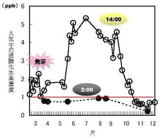 hydrogen peroxide-3