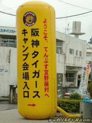 THE・めんそーれタイガース!な宜野座村。