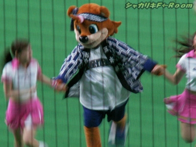 カビー、カワイすぎる…(*´ェ`*)