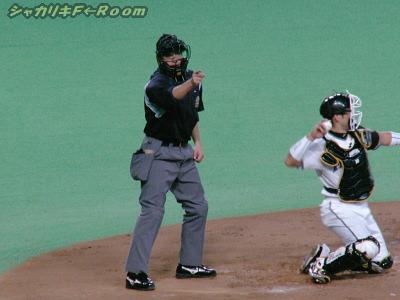 でも球審の津川さんが射抜いてくれました(ストライクって事ねw)