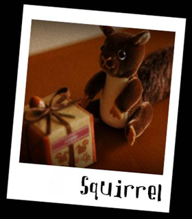 リス,squirrel,present,box