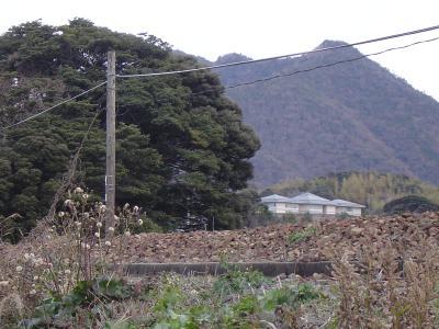 20080126214608.jpg