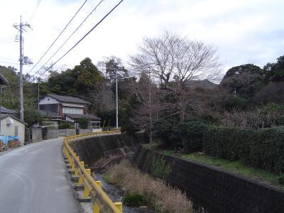 20080126214706.jpg