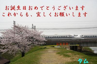 IMG_2940.jpg