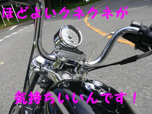 05092714.P1030232.jpg