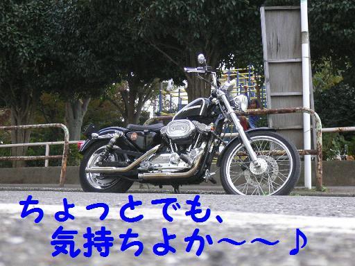 05110716.P1040011.jpg