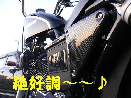 05111916.P1040154.jpg