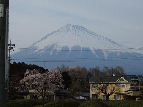 2008_0404桜の身延山0012