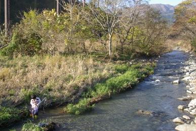 四十八瀬川で魚釣り3