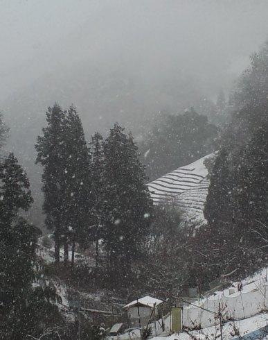 雪の和田集落