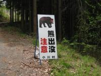 熊出没注意 090504