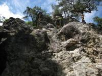物見の岩 ゲレンデ下部ハング090621_cIMG_1164