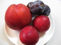 食 桃類の盛り合わせ 090817_cIMG_2764