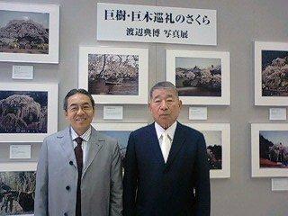 巨樹・巨木巡礼のさくら  渡辺典博 写真展