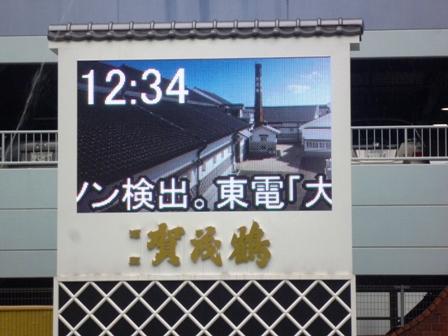 P1100111.jpg