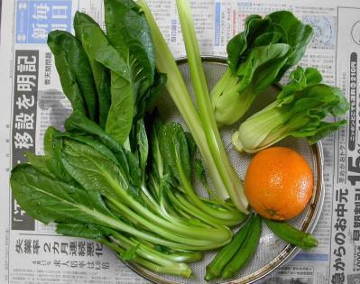 a野菜ジュース1本分