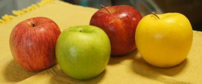 4小玉りんごイントロ