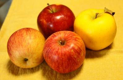 b小玉りんご3種