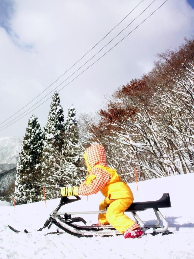ski-okuibuki02