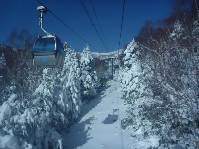ski-shigakogen101226-02