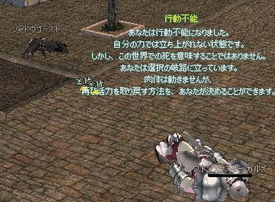 2_20100901183249.jpg