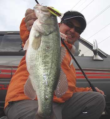 私の最大魚