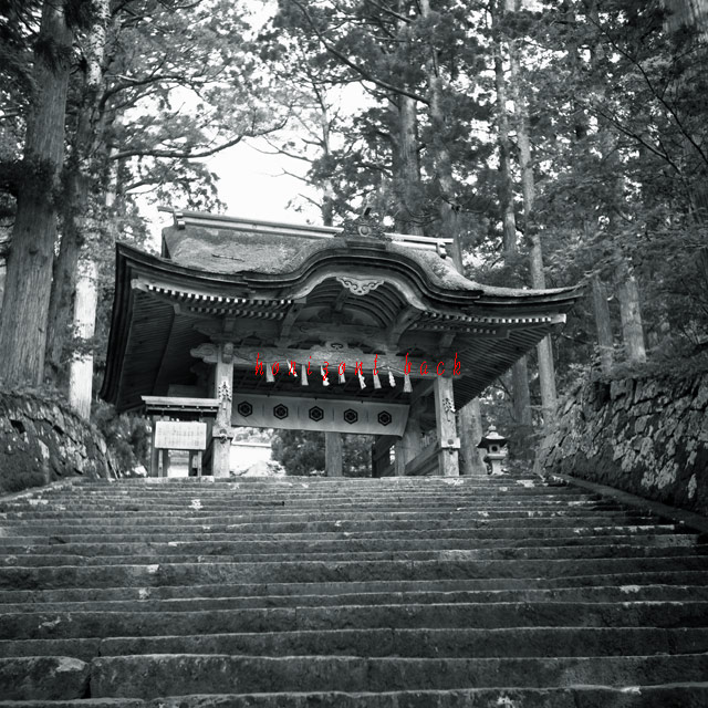 yashica-0004.jpg