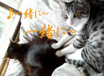 純ニ@替え歌3