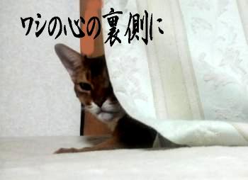 げんご@DEBUじゃない13
