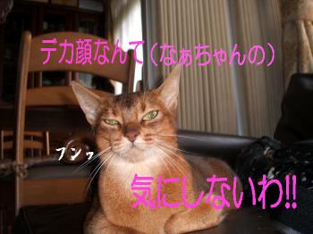 ビビ@なぁちゃんなぁちゃん1
