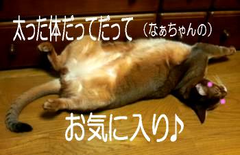 げんご@なぁちゃんなぁちゃん3